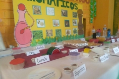 Degustaciones Quimica Organica-Instituto Zoila (12)