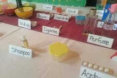 Degustaciones Quimica Organica-Instituto Zoila (15)