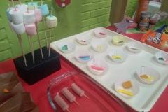 Degustaciones Quimica Organica-Instituto Zoila (2)