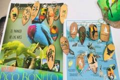 Dia Internacional del Turismo 2018-Instituto Zoila D. Santos Pineda (9)