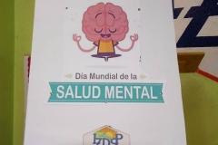 Salud Mental 2018- Instituto Zoila (13)